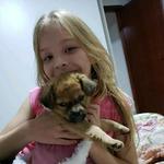 luna_dog02